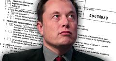 Elon Musk Divorce Talulah Riley Billions