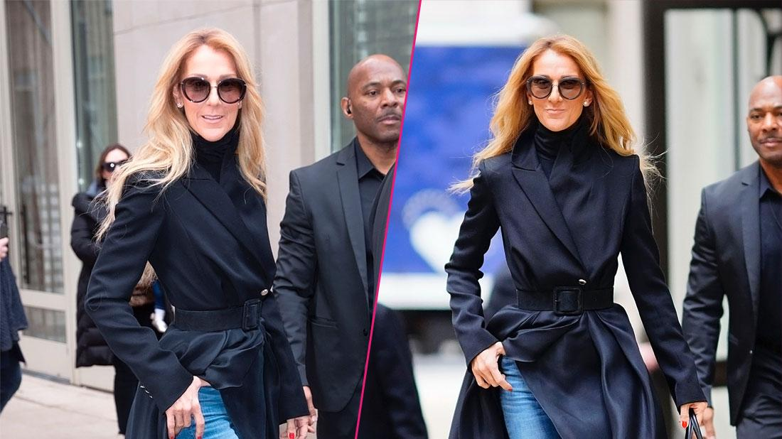 Celine Dion Looks Scary Skinny In New York