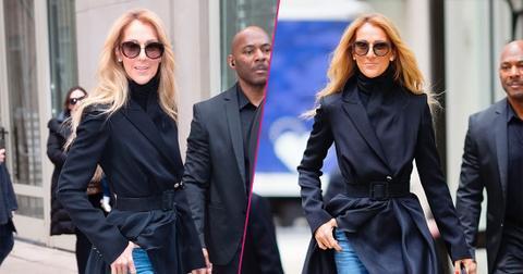 Celine Dion Looks Scary Skinny In New York