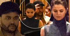 //selena gomez the weeknd dating paris hotel pp