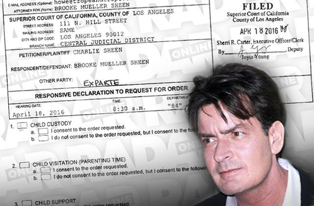 Brooke Mueller Charlie Sheen Child support case accusations
