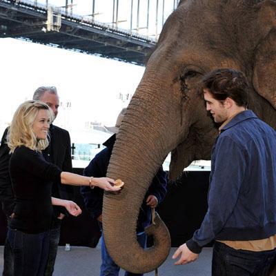 //water_for_elephants__wenn_ _