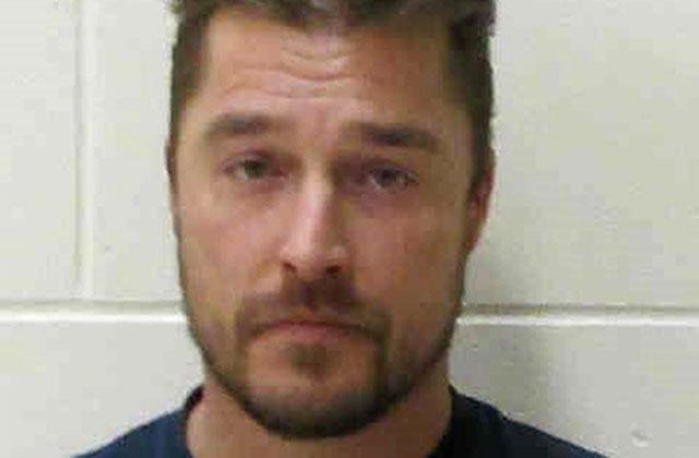 //chris soules past arrest bar fight fatal accident pp