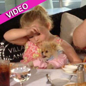 //honey boo boo feed dog