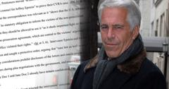 Prince Andrew Jeffrey Epstein Loses Court Motion Plea Deal