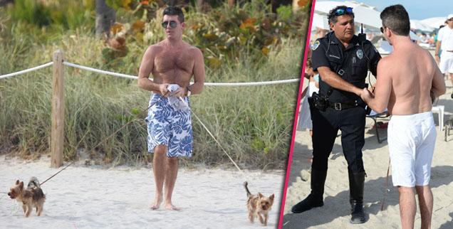 //simon cowel dogs beach police pp