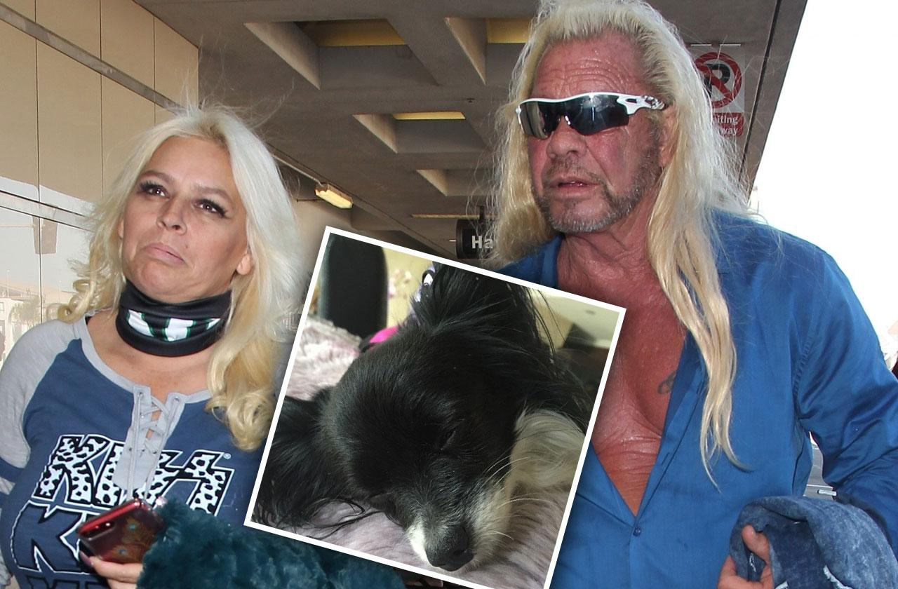 Dead Dog The Bounty Hunter Beth