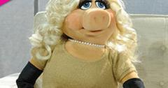 //miss piggy botox anderson cooper