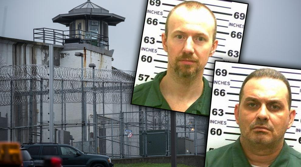 Prison Break New York Beaten