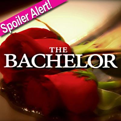 //the bachelor logo
