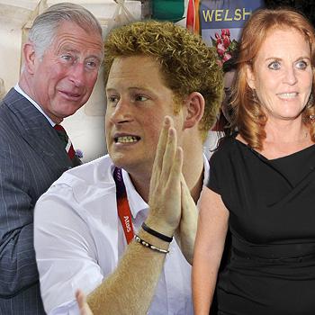 //royal scandals prince harry charles wenn