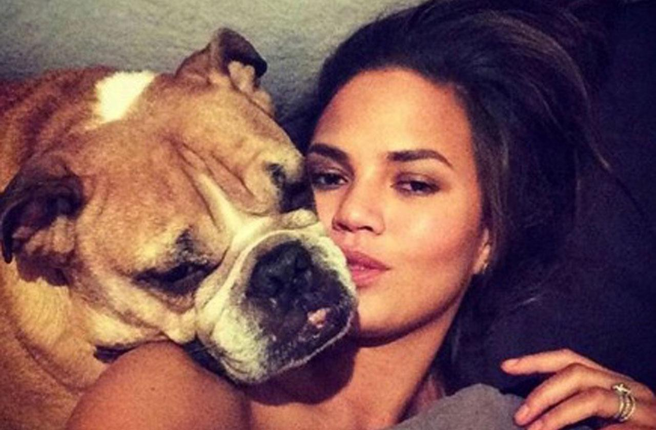 //Chrissy Teigen Dog Death pp