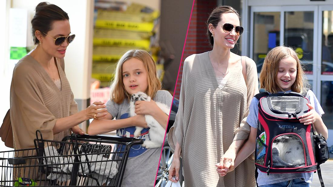 Angelina Jolie takes her daughter Vivienne and their bunny to a pet store for toys and treats. Angelina, joined by her daughter and a bodyguard, spent about 20 minutes at a local Petco shopping for things for their bunny.