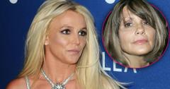 Britney Spears Mother Attorney Approved Conservatorship Case