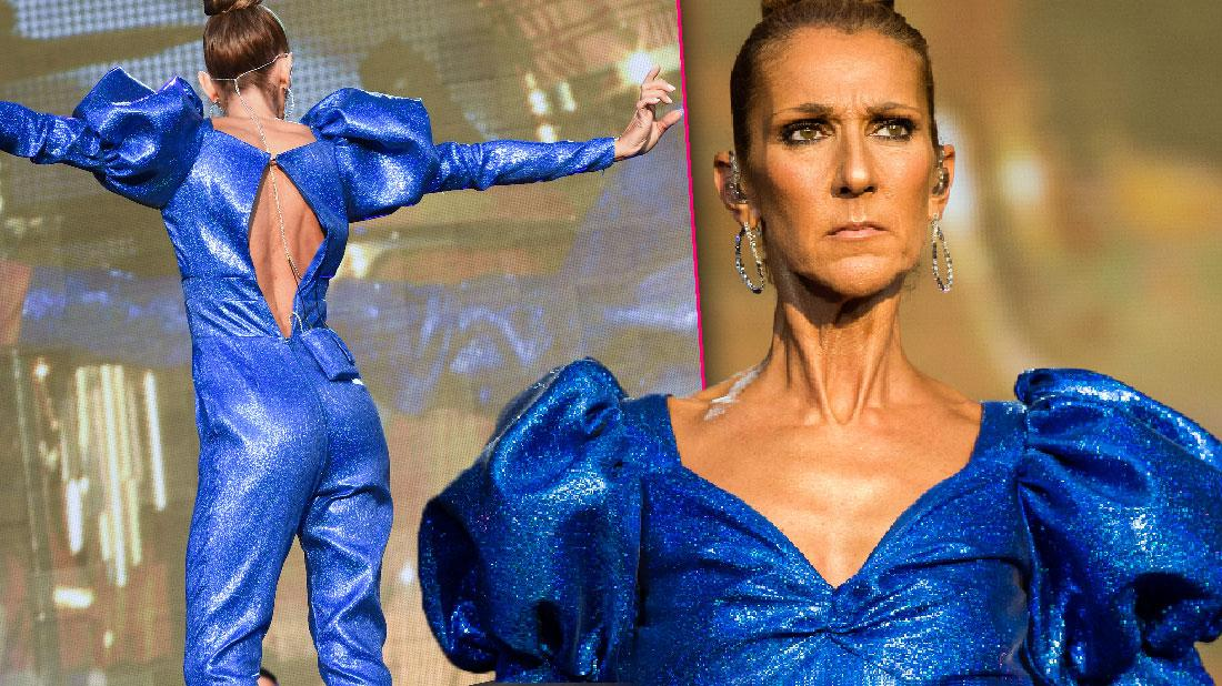 Celine Dion Looks Scary Skinny Performing In London
