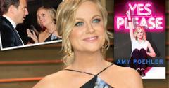 //amy poehler opens up about her divorce new book yes please