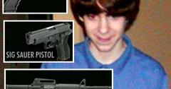 //adam lanza weapons
