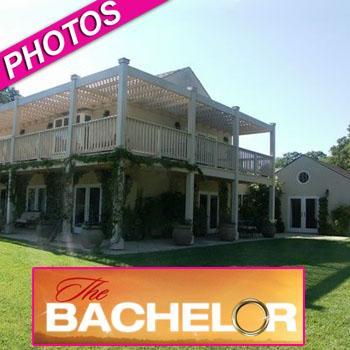 //bachelor house