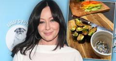Shannen Doherty's New Healthy Routine Amid Cancer Battle