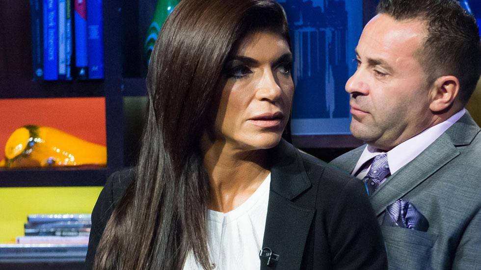 //teresa giudice divorce appeal