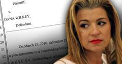 //rhobh prison dana wilkey plea agreement