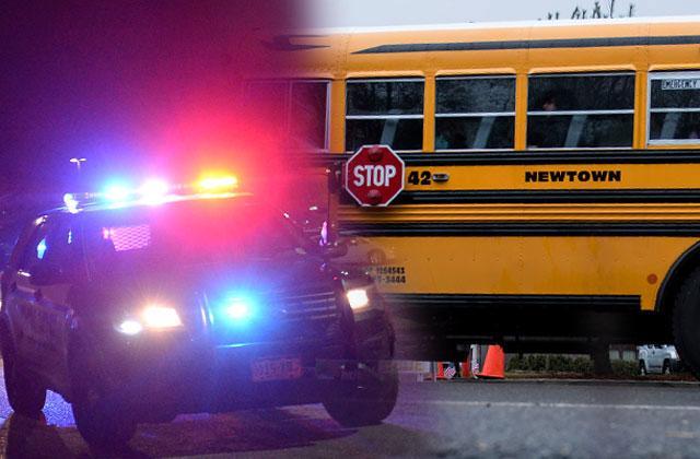 //Newtown Connecticut Teacher Caught Bringing Gun To School pp