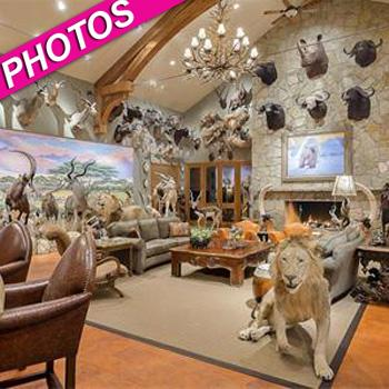 //texas house stuffed animals post_