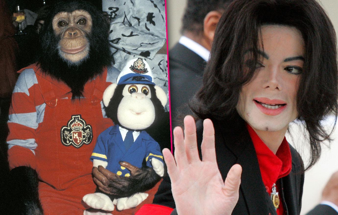 Michael Jackson's Chimp Bubbles Hates Him