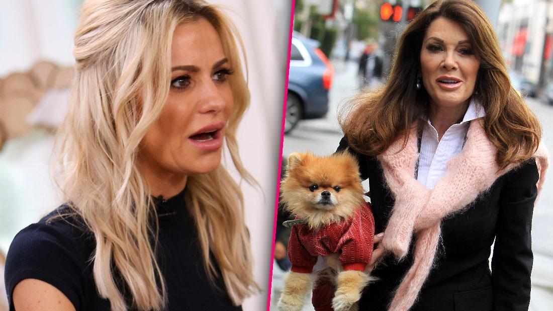 Dorit Kemsley Denies Mistreating Dog RHOBH Lisa Vanderpump