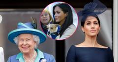Queen Elizabeth II and Meghan, Duchess of Sussex watch a flypast to mark the centenary of the Royal Air Force from the balcony of Buckingham Palace on July 10, 2018 in London, England. Inset center, Meghan Markle with her rescued puppy.