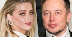 Amber Heard Elon Musk Holiday Vacation Together