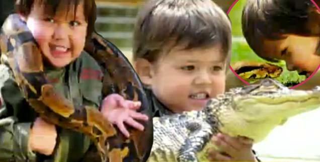 //gator boy australia