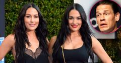 Twins Brie & Nikki Bella Pregnant At Same Time: Learn The Details
