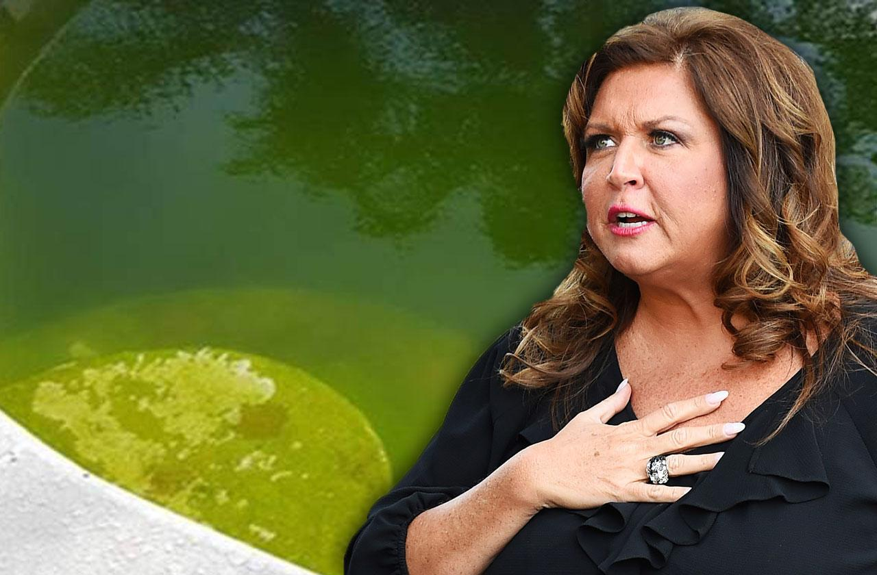 abby lee miller dirty pool mosquitoes rats photos dance moms