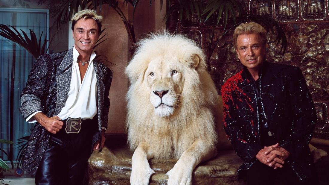 Siegfried Roy Horn Tiger Trainer Fault