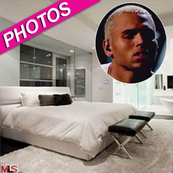 //chris brown hollywood hills home photos