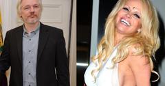 Pamela Anderson Julian Assange Romance Rumors Embassy Visits