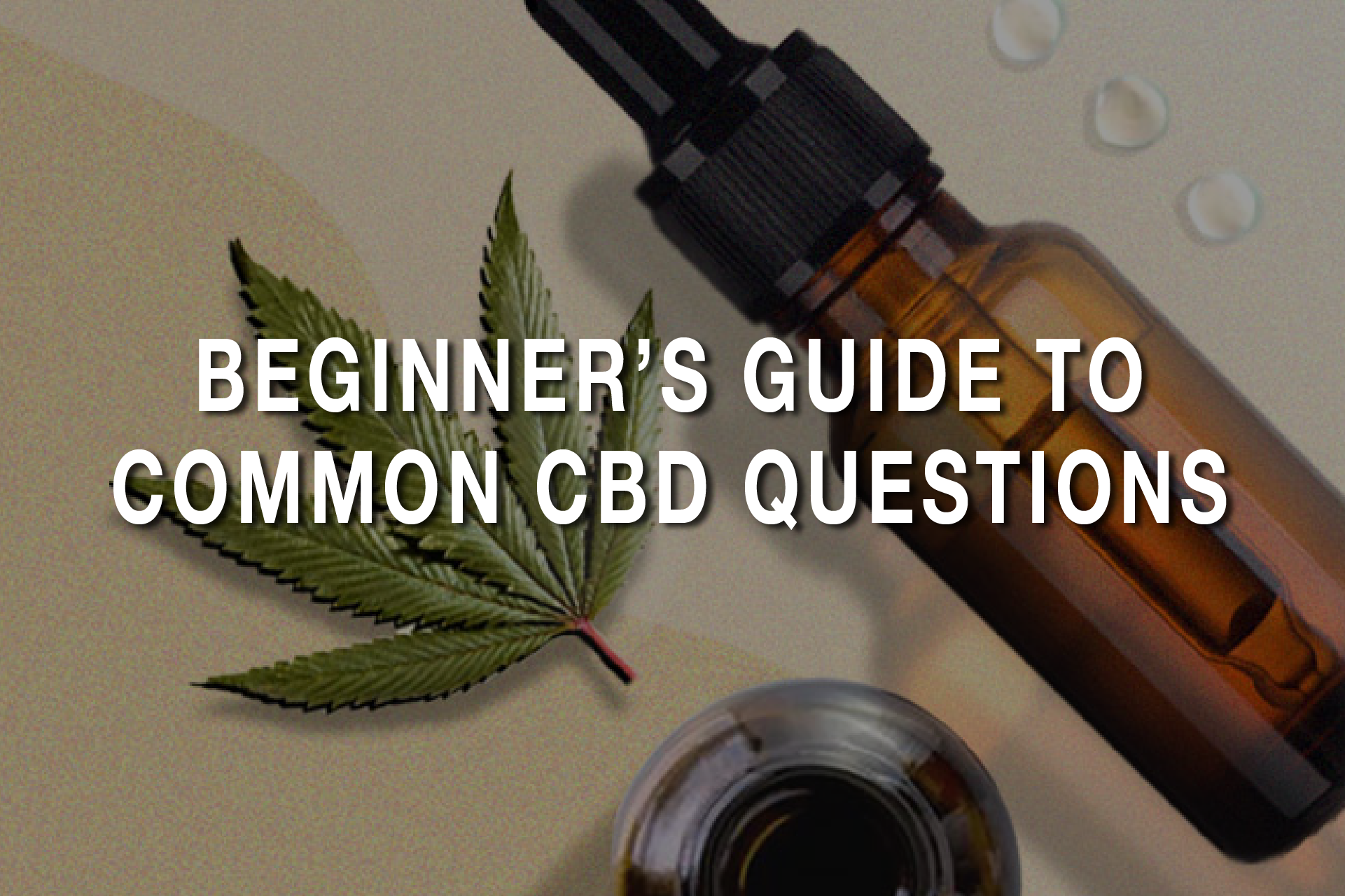Beginner's Guide to Common CBD Questions