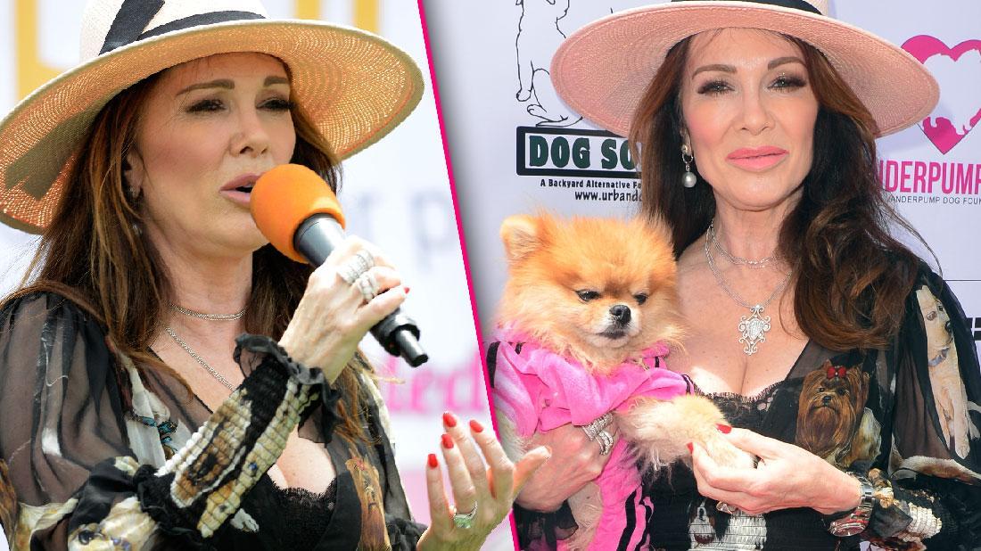 Lisa Vanderpump Attends Dog Day Amid RHOBH Feud