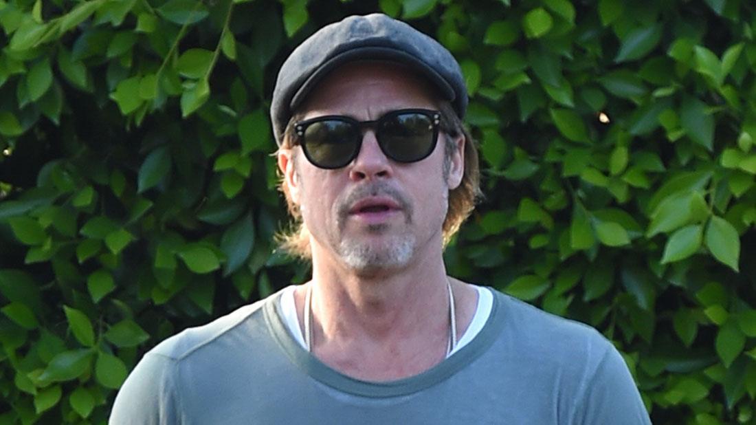 Brad Pitt Turns To Beekeeping Amid Flagging Career