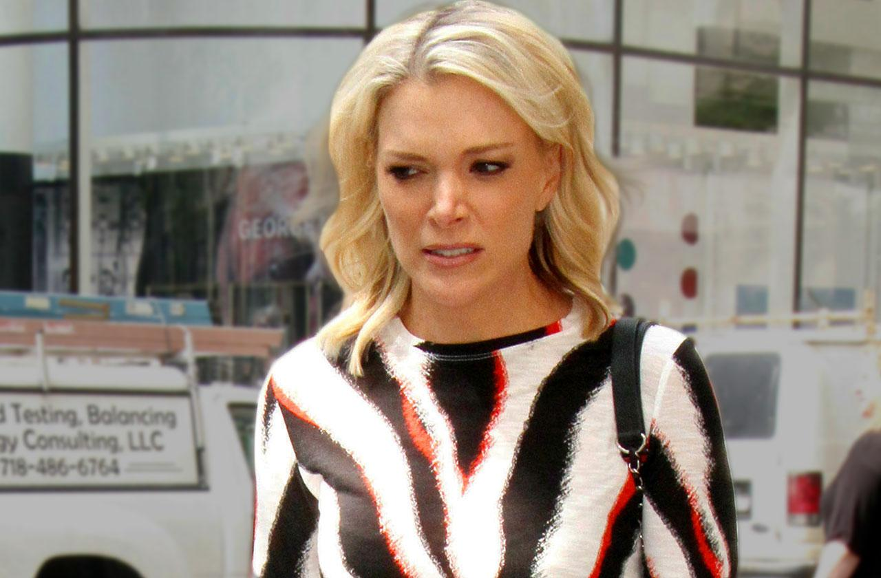 Megyn Kelly Today Show Guests Controversy