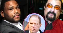 //Harvey Weinstein Anthony Anderson Steven Seagal Sex Assault pp