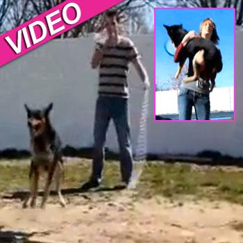 //geronimo dog jump rope