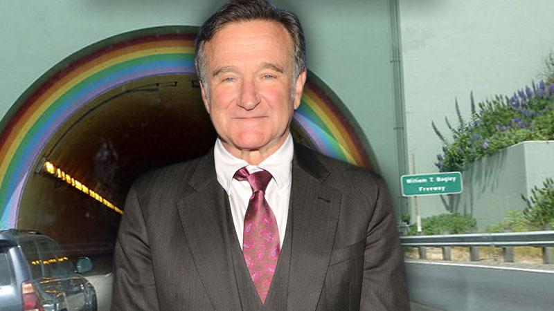 //robin williams waldo tunnel
