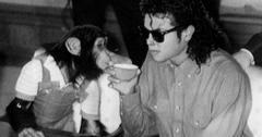Michael Jackson Pet Chimp Bubbles Movie