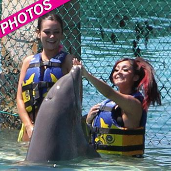 //snooki jwoww dolphins post