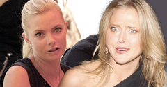 //estella warren stole purse jaime pressly