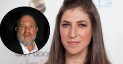 //mayim bialik says harvey weinstein proves upside to not being sexy pp
