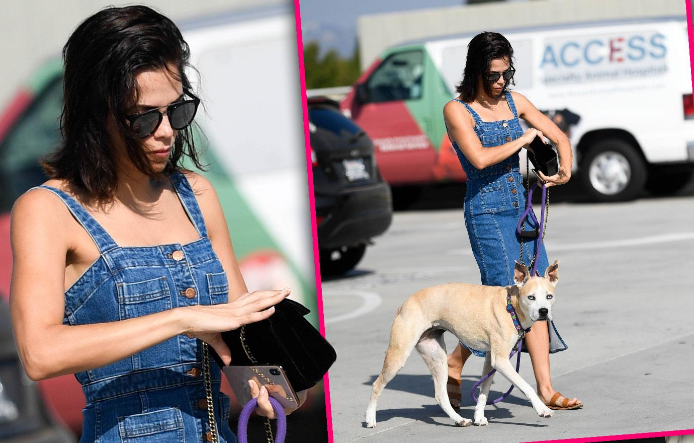 Jenna Dewan Takes Dog To The Vet