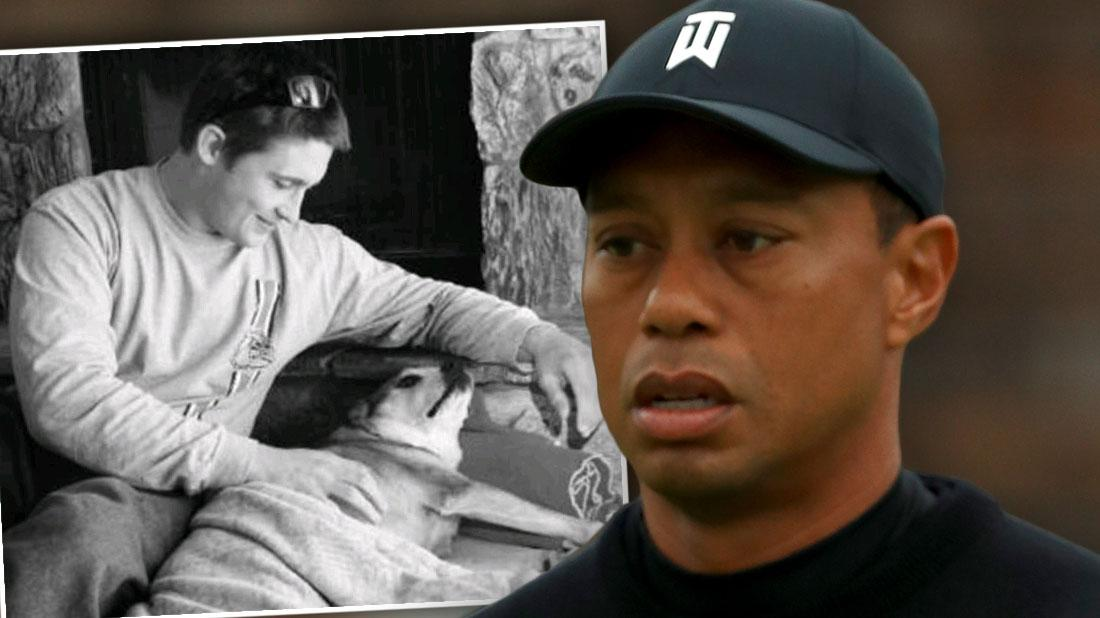 Tiger Woods slapped with wrongful death lawsuit after ex restaurant employee died drunk driving